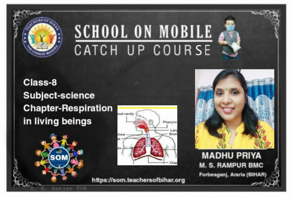 class 8| Day-1st| subject-Science| chapter-Respirarion in living beings|Topic-Respiration in animals and plants|Teacher-Madhu priya Topic-